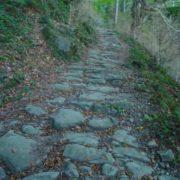El camí es com una Via Romana
